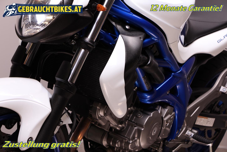 Suzuki SFV 650 Gladius